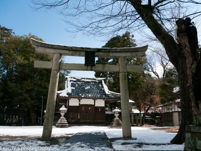 Hikone jinja shrine.