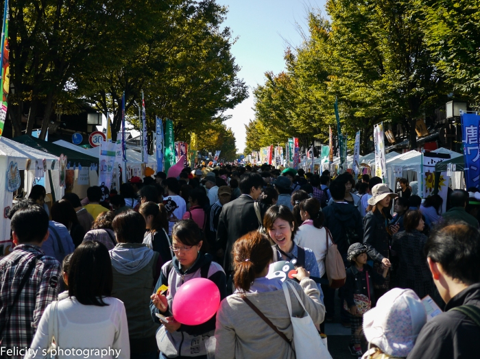 Little room to move along Hikone's Castle Road, as literal busloads of people attend the annual mascot festival.
