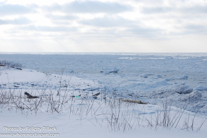 Floes of ice make it difficult to determine where the snowy beach ends and the ocean begins.