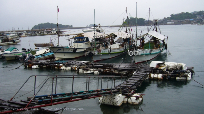 Fishing vessels wait for fine weather.