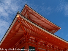 Gorgeous Garan, Koyasan's pagoda, against a stunning, early autumn sky.