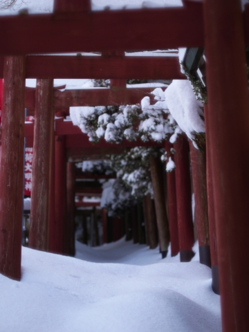 Red torii gates half buried.
